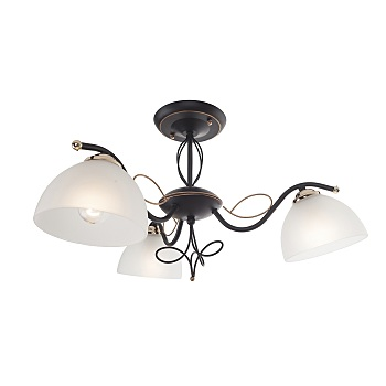 Фото товара 554/3PF-Blackpatina IdLamp RAGIA