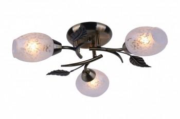 Фото товара A6157PL-3AB Arte Lamp ANETTA