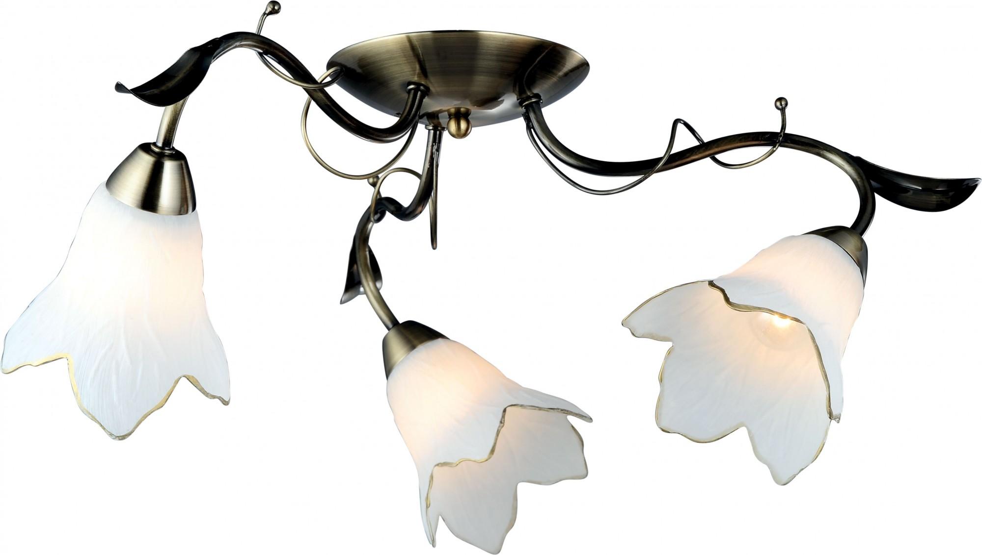 Фото товара A6066PL-3AB Arte Lamp