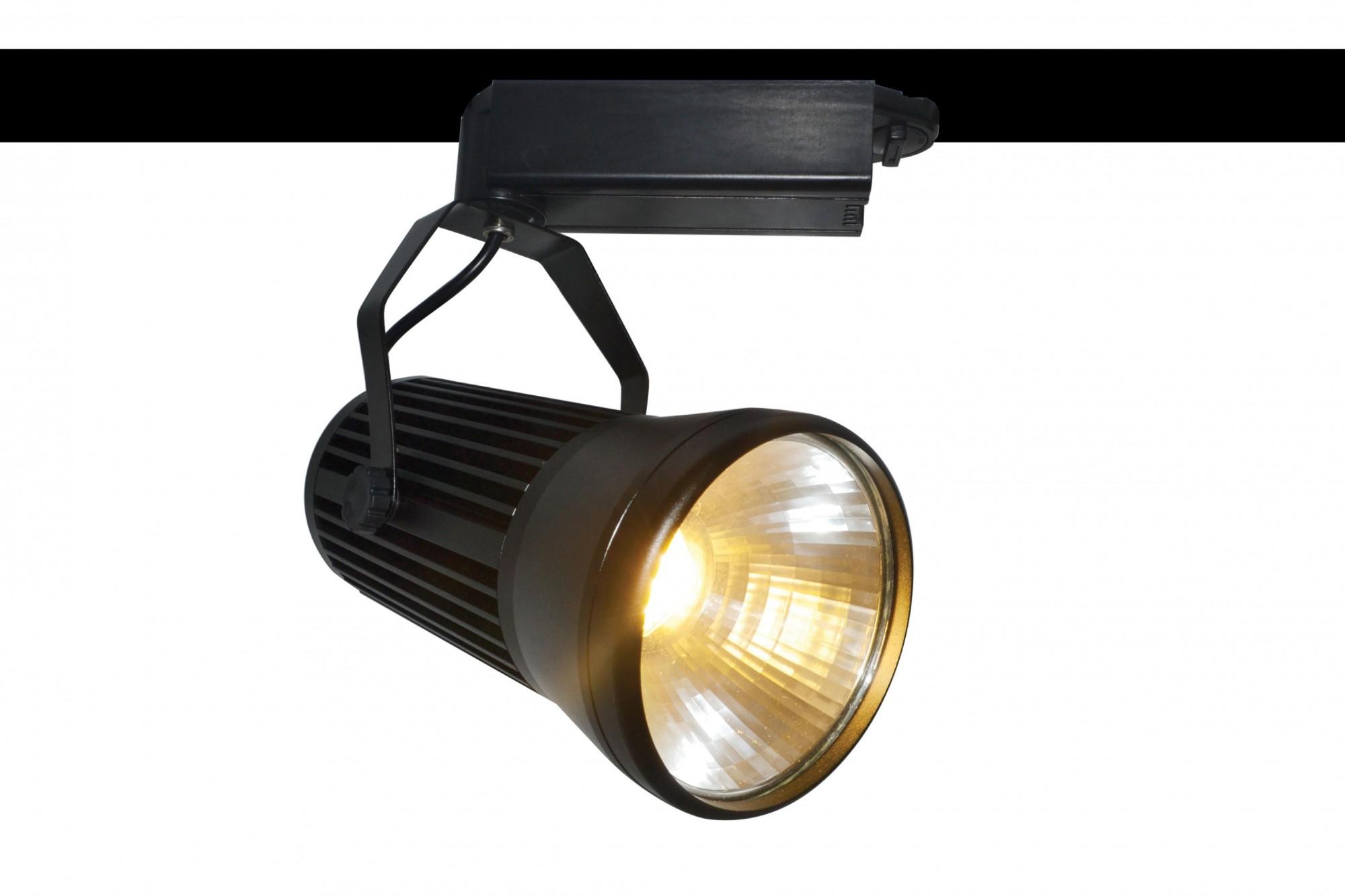 Фото товара A6330PL-1BK Arte Lamp