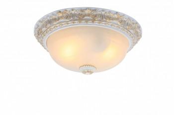 Фото товара A7121PL-2WG Arte Lamp TORTA
