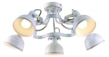 Фото товара A5216PL-5WG Arte Lamp MARTIN