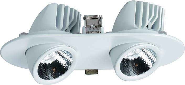 Фото товара A1212PL-2WH Arte Lamp CARDANI