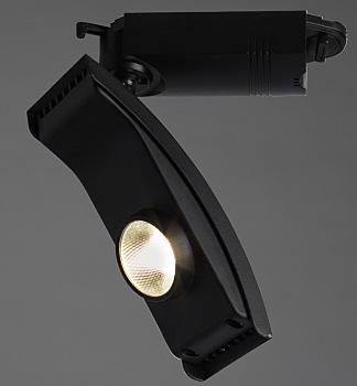 Фото товара A2120PL-1BK Arte Lamp