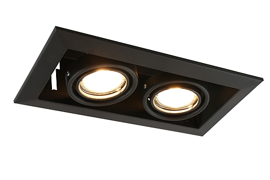 Фото товара A5941PL-2BK Arte Lamp CARDANI PICCOLO