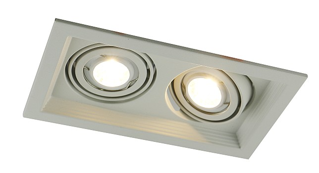 Фото товара A6661PL-2WH Arte Lamp CANIS