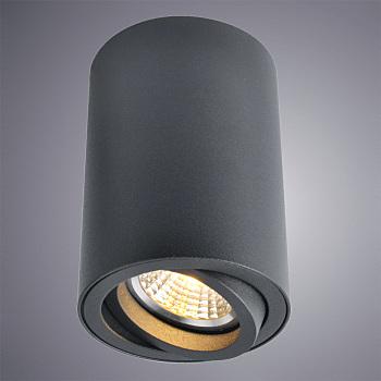 Фото товара A1560PL-1BK Arte Lamp SENTRY