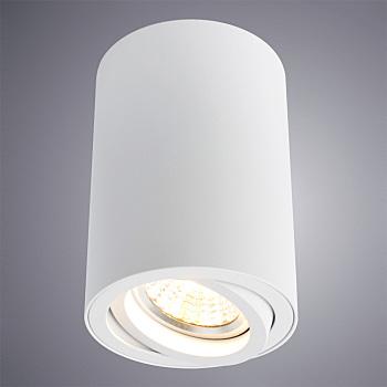 Фото товара A1560PL-1WH Arte Lamp SENTRY