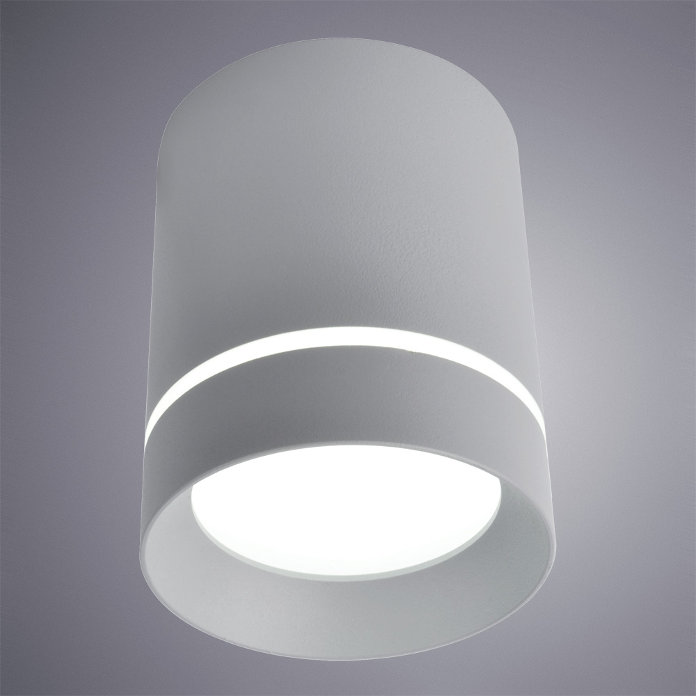 Фото товара A1909PL-1GY Arte Lamp