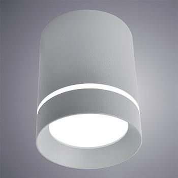 Фото товара A1909PL-1GY Arte Lamp ELLE