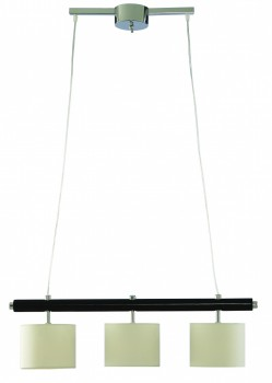 Фото товара A1038SP-3BK Arte Lamp WOODS