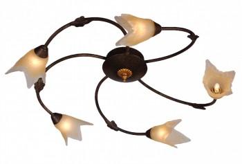 Фото товара A1050PL-5BR Arte Lamp RONDO