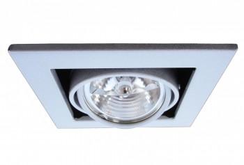Фото товара A5930PL-1SI Arte Lamp CARDANI MEDIO