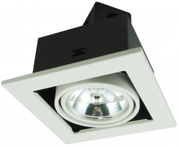 Фото товара A5930PL-1WH Arte Lamp CARDANI MEDIO