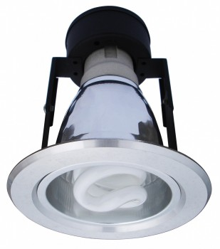 Фото товара A8043PL-1SI Arte Lamp DOWNLIGHTS