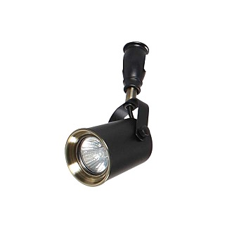 Фото товара 3629/1 Odeon Light FLEXIBLACK