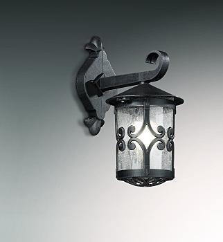 Фото товара 2311/1W Odeon Light BUKLE